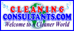 Cleaning Consultant Services